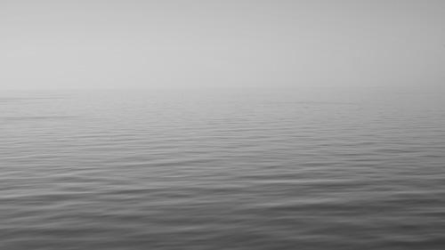 Lake Jung bw